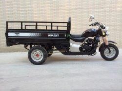300cc benzina 3 ruote Cargo Moto in vendita