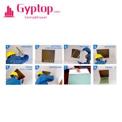 Comitato di accesso provvisto di cardini del gesso per il soffitto o la parete
