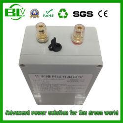 batteria dello ione di 12V 40ah 50ampere Lithium/Li-ion/Rechargeable/Lithium con il caricabatteria