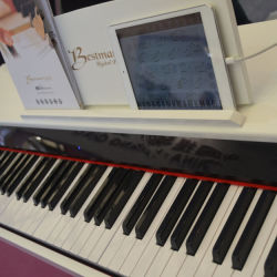 Your iPad와 Pad에 지적인 피아노 Electric Digital Piano Can Connect
