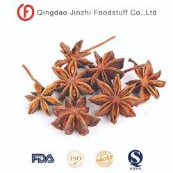 Het Kruid van het Anijszaad van China van de Goede Kwaliteit van de Levering van de landbouwer