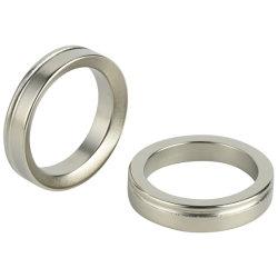 Buiten Diameter 200mm de Ring van de Magneet van het Neodymium