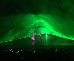 Зеленый свет анимации 10W лазерный свет для DJ бар производительность