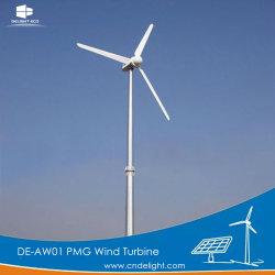 1kw/2kw de horizontale Pmg van de As Permanente Windmolen van het Controlemechanisme van de Generator MPPT van de Magneet