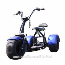 motorino grasso Citycoco elettrico potente della città della gomma del motorino elettrico di mobilità della rotella della grande rotella 2 di Citycoco di potere eccellente 1000W