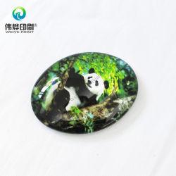 De Gift/de Kunst/de Ambacht van de Magneet van de Ijskast van de Panda van Cutie
