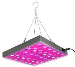 Ampliar o espectro de luz da lâmpada de crescimento de plantas de interior para flores e legumes