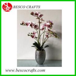 Orchidea reale di tocco del fiore artificiale in POT