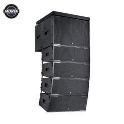 Audio riga professionale sistema acustico di schiera