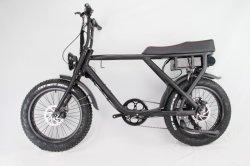 De 26 pulgadas de alta calidad del pedal de batería de litio de ayudar a la ciudad de Dama bicicleta eléctrica 48V 2018