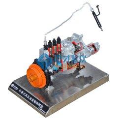 Anatomisches Modell Spulenkern-der Hochdrucköl-Pumpe