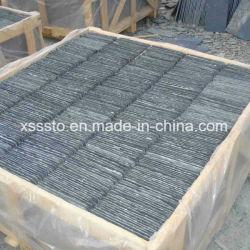 [شنسس] طبيعيّة أرضية أردواز حجارة أسود أردواز