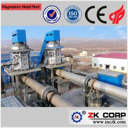 Energiebesparend hoogvermogen Metaalfabriek voor magnesium