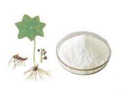 100% naturel extrait Sinopodophyllum hexandrum 99% de la podophyllotoxine