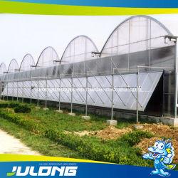 Китайский дешевого томатного/клубничный/салат гидропонное огородничество пластиковую пленку парниковых