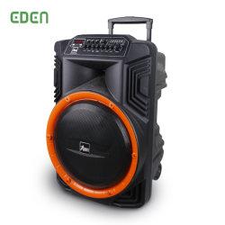 Sem fio portáteis multimídia recarregável profissional DJ Karaoke Caixa de som Alto-falante Bluetooth do Carrinho