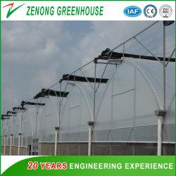 Multispan dupla camada de plástico filme Gas-Filled Green House com sistema de dispositivo Gas-Filled para tomate/Morango