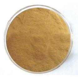 100% Natural Bladderwrack en polvo extracto de Fucus vesiculosus