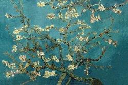 Van Gogh de branches d'amande de peintures d'huile pour la reproduction