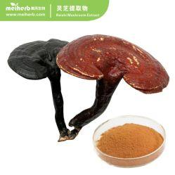 Оптовая торговля на заводе 100% натуральные Reishi гриб извлечения