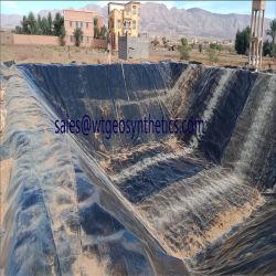 HDPE 물고기 새우 연못 강선을%s 까만 Geomembrane 가격 플라스틱 판금