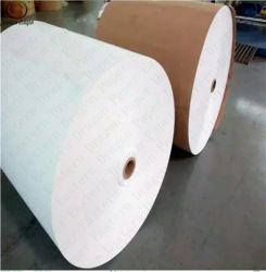 100% Holzpulpe Offset Papier Wasserdichte Papiertassenrolle