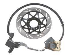 Freno de disco de motocicleta (RTD-WY(QS))
