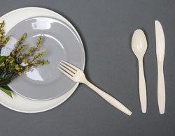 FDA Tafelgeschirr-Wegwerftafelgeschirr-Plastiktafelgeschirr