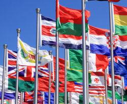 مخصص رخيصة 100% بوليستر الرقمية طباعة مختلف الأعلام الوطنية
