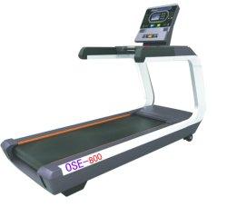 적당 장비 디딜방아 또는 운동 벤치 또는 체조 장비 회전하는 흉상