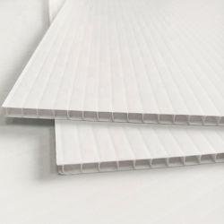 중국제 물결 모양 빈 Coroplast/Corflute/Correx/Fluted/Twin 벽 PP/Plastic 널