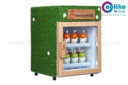 Minihandelsflaschen-Kühlvorrichtung für Getränk in den wahlweise freigestellten Plakaten