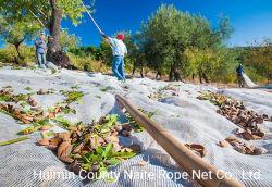 100% جديد من زيت الزيتون النقي HDPE البلاستيك صافي حصاد الزيتون