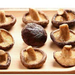 Здоровое питание вакуумный жареные фрукты и овощи Vf грибы шитаке