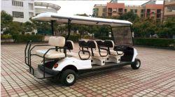 Motor AC de fornecedor de fábrica na China Golf Carro