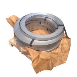 石造りのパッキングのための腐食によって電流を通される鋼鉄テープへの抵抗