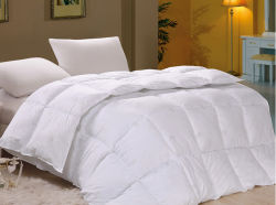 Hot Sale Chinese Supplier Hotel/Home Use White Duck Goose Down Comforter