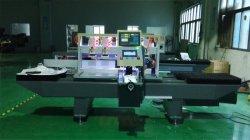 Berufshersteller, der Produkt-Poliermaschine bekanntmachend angibt