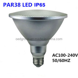 La iluminación de césped de la fuente de luz exterior IP65 20W Bombilla Globo LED E27