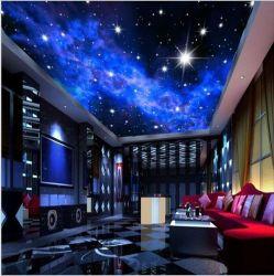 De Hemel van de Nacht van het Decor van het Plafond van de Zaal met Door sterren verlicht Scherm van de Film van de Plafonds van het Ontwerp van de Rek van de Ster het Ontwerpen Afgedrukte