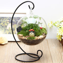 Micro Landscape Iron Frame Glass Vase Transparent Hanging Round Bottle 이끼 DIY Vase Creative 홈 공예