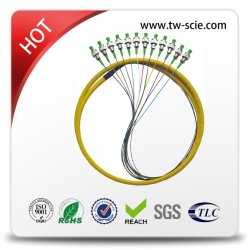 FTTH Council Gpon/Epon Divisor PLC 24C ou 48c Gpon/fibra óptica EPON CAIXA DE ABS