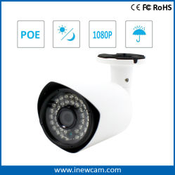 1080p PoE 기술 IP 카메라 내장 마이크