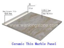 陶磁器のBacked MarbleおよびFloorおよびOutside WallのためのGranite Tile