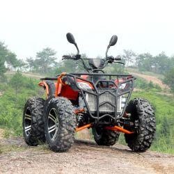 300cc ATV 완전히 자동적인 4 치기 쿼드