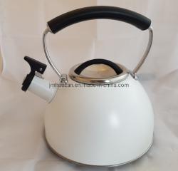 Aço inoxidável Chaleira caldeira de água para todos os fornos