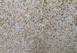 De natuurlijke Tegels van de Muur van de Vloer van het Graniet van de Roest van Gloden van de Steen G682