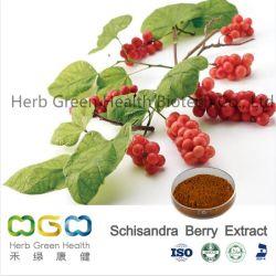 Natürlicher Pflanzenauszug Schisandra Beeren-Auszug für das aufladenImmunsystem-Kraut Kräuter