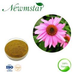 100% orgánicos naturales Echinacea Purpurea Extract con 4% de polifenoles y ácido Cichoric