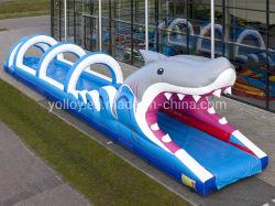 Amusement Park requin gonflable ventre glissoire d'eau Toy